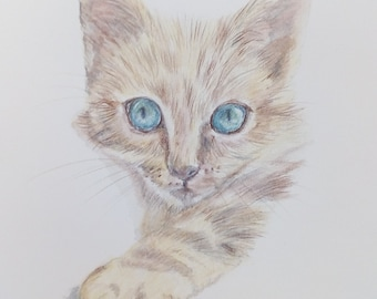 Kitten tabby cat pencil drawing size A5/ watercolourpencil/ blue eyes/ fur/teenager gift/small artwork