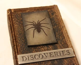 Creepy Spider Wall Art