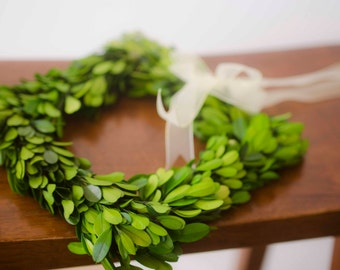 """8"""" Square Preserved Boxwood Wreath, Simple Spring Wreath, Spring wreath, boxwood wreath, small boxwood wreath"""