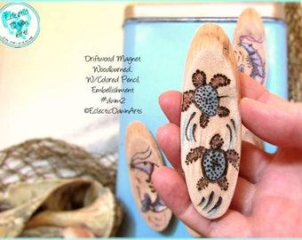 Baby Turtles Driftwood Magnet #DWM2