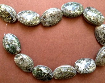 Sea Shell Beads Abalone Whole (16-inch strand)