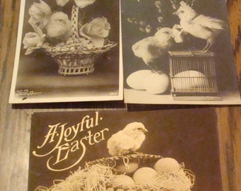 LAST CHACE SALE 3 Real Photo Easter Postcards (Chicks)