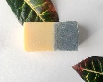 Charcoal Fennel Handmade Soap.4