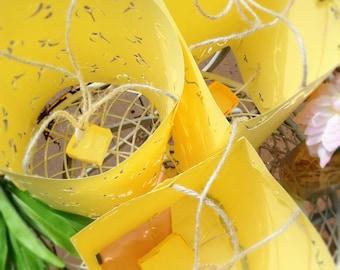 Tangled Lantern | Rapunzel Lantern | Large Hanging Lanterns Variety Pack