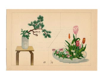 c. 1933 IKEBANA FLOWER ARRANGEMENT Japanese botanical lithograph - original vintage print -