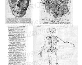 Vintage Etchings Greyscale Skull and Bones Collage Sheet Digital Download for Halloween Crafting and Decor