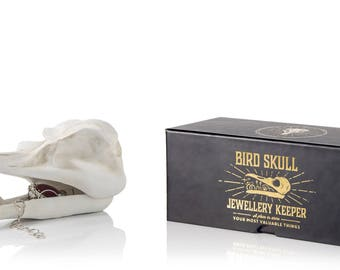 Bird Skull Trinket Box