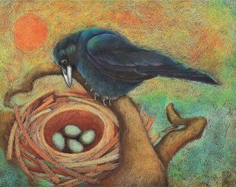 Crow's First Nest