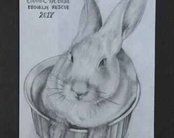 Original Portrait of Carrot in Dish