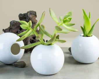 2 Mini Succulent planters White modern ceramic planter Round cactus plant pot Home desk decor Handmade pottery Planters housewarming gift