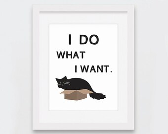 Cat Art Print, I Do What I Want Cat in Box Printable Art, Cat Lovers, Black Cat Long Hair, Fat Cat in Box, Funny Cat Print Instant Download