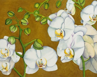 Watercolor painting...SOPHISTICATED PHALS...orchids...giclee