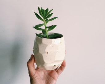 Speckled succulent planter. Facet Vessel No. 4 - speckled and gold. The Object Enthusiast. Indoor ceramic planter. Succulent planter.