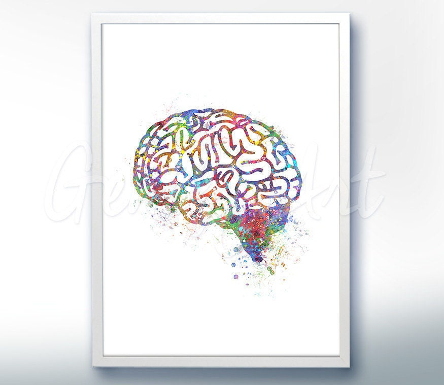 Brain Watercolor Art Print Brain Anatomy Watercolor Art