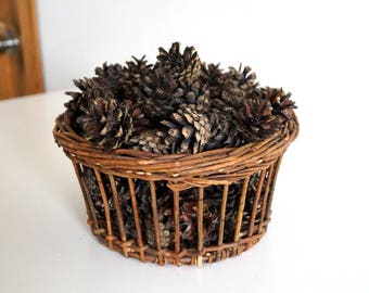 100 Pinecones natural dried flowers brown color Lot of real pine cones for crafts home decoration Natural Pinecones Organic Pinecones