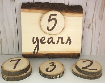 Gender Neutral Photo Props, Photo Prop for Kids, Toddler Photo Prop, Wood Slice Photo Props, Kid Age Props, Big Kid Milestone Markers