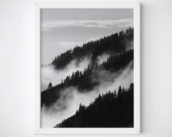 Forest Wall Art, Forest Photography, Foggy Forest Print, Forest Poster, Forest Fog Print, Misty Forest Print, BW Forest, Forest Printable