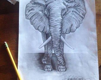 Elephant Art Print, Pencil Drawing, Black and White