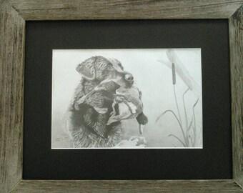 ORIGINAL Black Lab hunting dog graphite pencil drawing