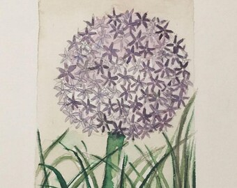 Giant Allium flowers ORIGINAL Watercolor sheet from the collection BOTANICAS decor
