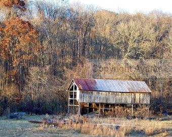 Forgotten BARN T7 Photograph Tennessee - Barn Photography