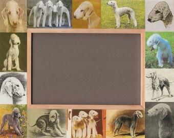 BEDLINGTON TERRIER / Dog Picture Frame / Unusual Gifts / Vintage Art