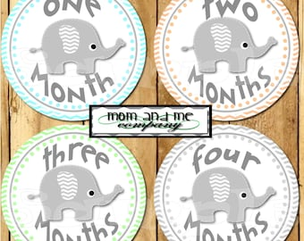 Baby boy Elephant Monthly Stickers Baby Stickers Baby Shower gift 1- 12 Months onepiece sticker infant monthly stickers bodysuit stickers