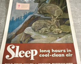 1951 Vintage Sleep Long Hours in Cool-Clean Air Michigan Tuberculosis Association Poster