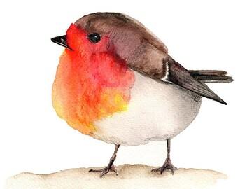 Robin Watercolor Instant Download