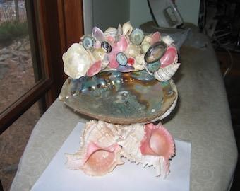 abalone candy dish