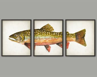 Brook Trout Watercolor Print Set Of 3, North American Trout Fish Painting, Game Fish Angler Gift, Trout Triptych Poster, Fishing Wall Art