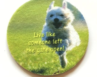 Live like someone left the gate open! - Car coasters for your cars cup holder - Auto Coasters - Set of two cute car coasters