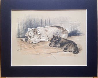 BULLDOG SCOTTISH TERRIER Signed mounted 1936 Lucy Dawson Bulldog and scottie terrier dog plate print Unique gift Christmas Birthday