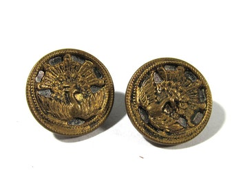 Victorian Peacock Twinkle Buttons Steel & Brass ANTIQUE Buttons Two (2) Mirror Back Peacock Bird Victorian Jewelry Sewing Supplies (D126)