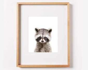 Baby Raccoon Printable Wall Art, Woodlands Nursery Decor, Nursery Animal Art, Digital Print, Instant Download Printable Art, Printable Decor