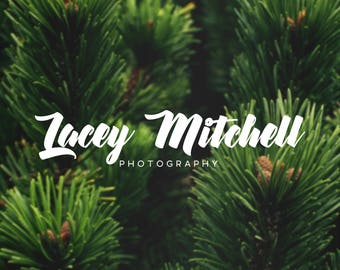 Premade Typography Logo, Photography Logo and Watermark, Unlimited Revisions, Business Branding, Watermark Logo, Logo Design, Logo #014