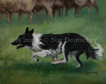 Border Collie print from painting