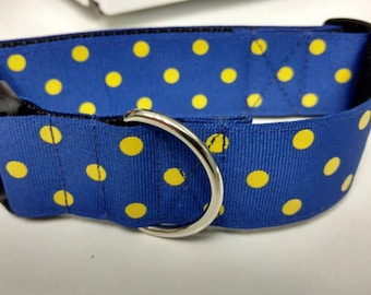 "Blue and Yellow Polka-Dot Dog Collar 1.5"" - READY TO SHIP - Only 1 Available at This Price"