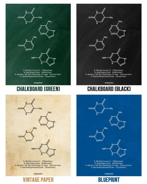 Dna molecules thymine adenine cytosine guanine poster science dna molecules thymine adenine cytosine guanine poster science print gift dna biology biochemistry biologist scientist chemistry art malvernweather Gallery