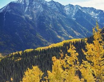 Colorado landscape, mountain print, fall decor, mountain artwork, Colorado photography, fine art photograph, landscape - Colorado's Color
