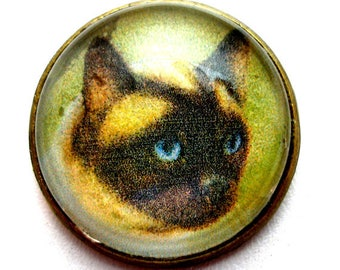 "Siamese CAT, domed glass studio button, 3/4"", 22mm. handmade."