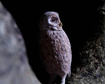 Owl Sculpture , Strix aluco Sculpture Bird , Sculpture  , brown version