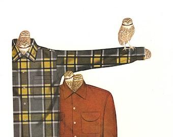 Burrowing owls. Original collage by Vivienne Strauss
