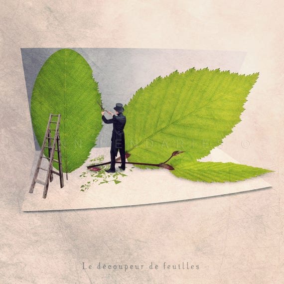 gifts for gardeners, Fun print, Fun art, Spring decor, Nature lover, Nature decor, Nature photography, Leaf cutter
