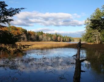 Pickerel Pond Sky Photo Card