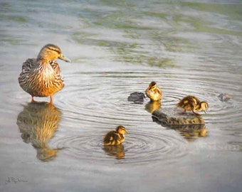 DUCKS, DUCKLINGS, Art Print, J Puz Wilson, photo art, digital art, bird, nature, Mallard, pond, mother duck, wildlife