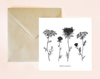 Botanical card, floral card, botanical postcard, plant drawing, botanical print, card, envelope card, floral print, botanical drawing