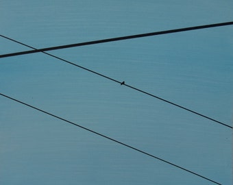 Power Lines 03
