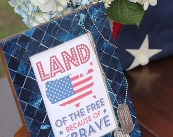 4th of July Party Signs