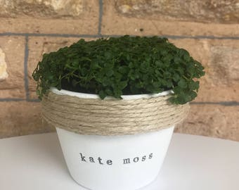 Kate moss | funny pot plant with a pun | present | gift 11cm pot